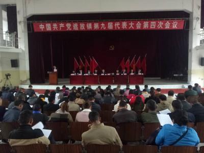 中国共产党遮放镇第九届代表大会第四次会议召开