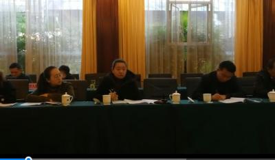 【代表团分组讨论】人大代表李枝彦建议:加大树包塔项目的推进力度,注重乡村振兴的规划、扶持、引导