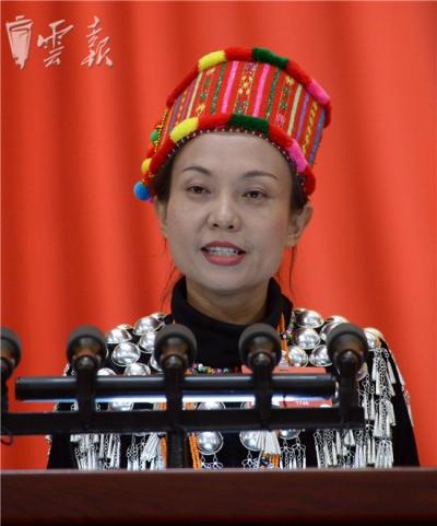 全国政协委员何庆将边疆群众的声音带到了人民大会堂