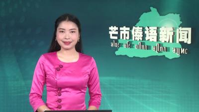 芒市傣语新闻2020年2月4日