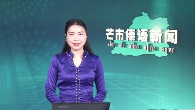 芒市傣语新闻2020年2月13日