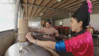"""【傣语】芒市风平镇坝么村有个合作社 用猪 """"养"""" 酒"""