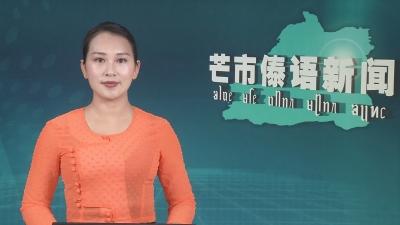 芒市傣语新闻2020年3月24日
