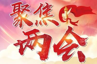 【聚焦两会】云南省代表团将以全团名义向大会提交4件议案22件建议