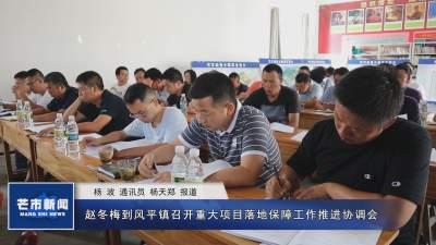 赵冬梅到风平镇召开重大项目落地保障工作推进协调会