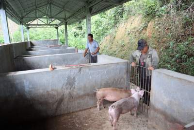 芒市农村集成式牲畜圈:让农民告别人畜混居境况