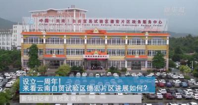 设立一周年!来看云南自贸试验区德宏片区进展如何?