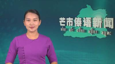 芒市傣语新闻2020年8月4日