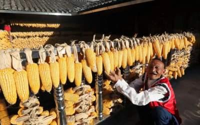 连续三天上了《新闻联播》!云南的小康生活有滋有味