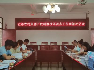 州级评估组评估芒市农村集体产权制度改革试点工作