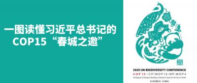【COP15】有一个亲身参与COP15大会的机会,来吗→