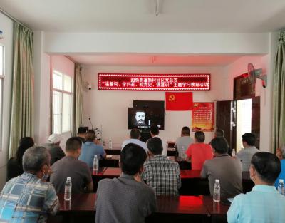 新村社区党总支开展党史主题学习教育活动