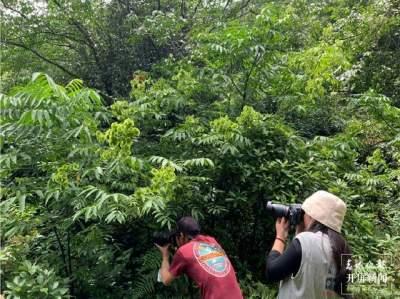 COP15云南生物多样性全媒体主题采访行在德宏启动