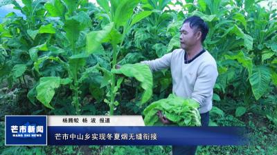 【视频】芒市中山乡实现冬夏烟无缝衔接