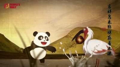 COP15丨熊猫胖达的秘境之旅