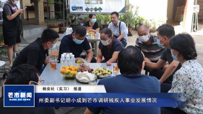 【视频】州委副书记胡小成到芒市调研残疾人事业发展情况