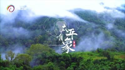 舞蹈《太平有象》神奇诠释亚洲象北迁南归之旅