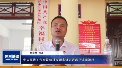 【视频】中央民族工作会议精神专题宣讲走进风平镇幸福村