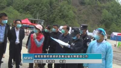 杨军到猴桥镇调研香蕉运输车辆管理工作
