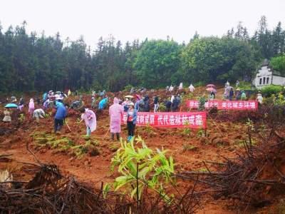 腾越镇开展义务植树活动
