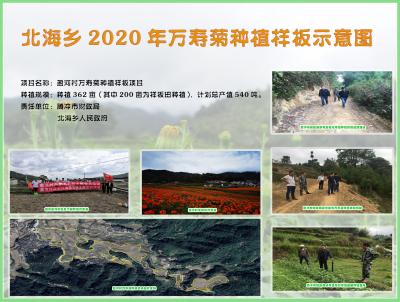 盈河村:产业推动促发展 财政助力迎丰收