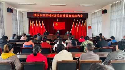 清水乡圆满完成村监青妇换届选举工作
