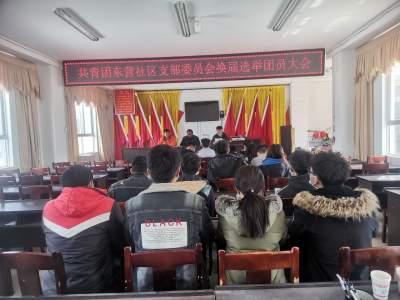明光镇圆满完成社区团组织换届选举工作