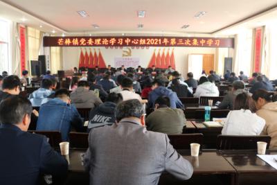 芒棒镇党委理论学习中心组集中学习党史