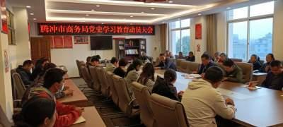 市商务局:召开党史学习教育动员大会