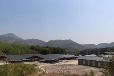 马站乡肉牛养殖场主体工程已全部完工