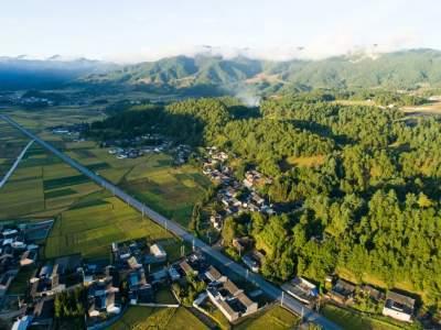 滇滩镇:厚植绿色发展理念 做实生态农业文章