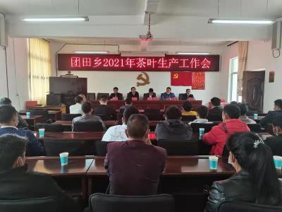 团田乡召开茶叶生产工作会议
