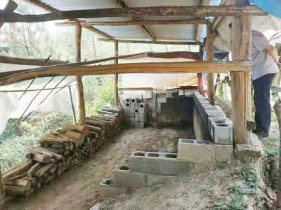 腾冲市大河国有林场拆除林区草果烤窑保生态安全