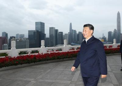 潮涌珠江,听总书记与大湾区的故事