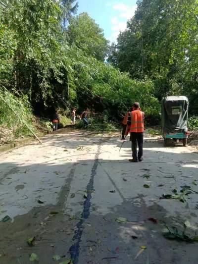 腾冲市交通运输局快速清障确保道路畅通