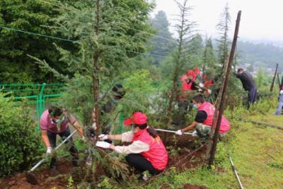 明光镇开展义务植树活动