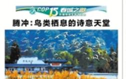 云南日报:腾冲鸟类栖息的诗意天堂