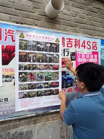 荷花镇:野生菌中毒防控出高招