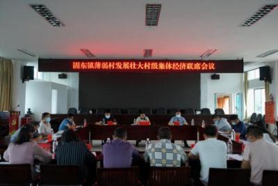 固东镇召开发展壮大村级集体经济座谈会