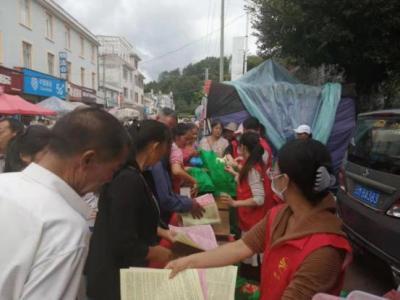 腾冲市司法局普法宣传进乡村