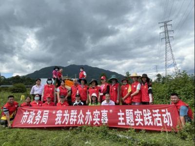 腾冲市政务局开展万寿菊采摘志愿服务活动