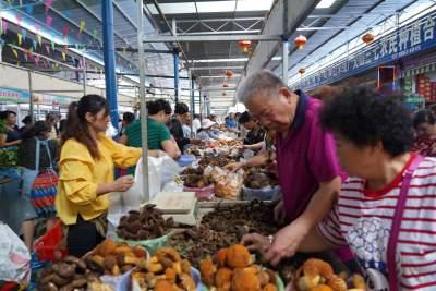 云南蒙自:多措并举确保市民安全食用野生菌