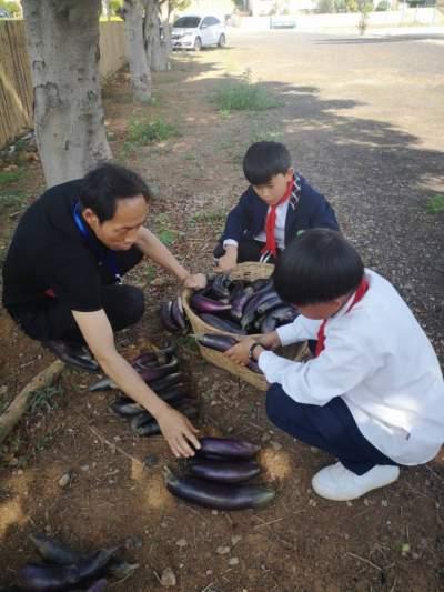 云南蒙自:小学校长李繁春,助力师生成为最好的自己