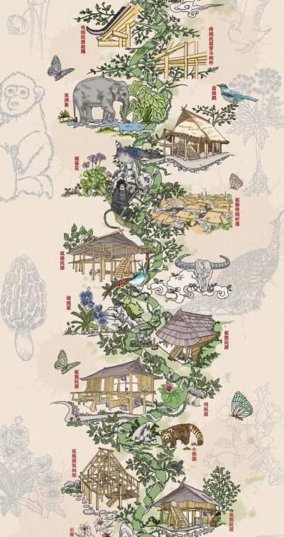 """跟""""建筑视线""""一起领略云南生物多样性之美"""
