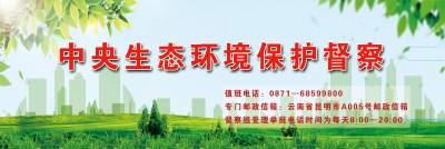 蒙自市人民政府关于中央第二轮生态环境 保护督察D2YN202104170020 交办 投诉问题办理情况