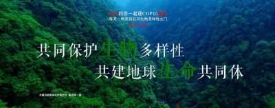 生物多样性 |【NO.127】红河约您一起迎COP15盛会 每天一物开启红河生物多样性之门
