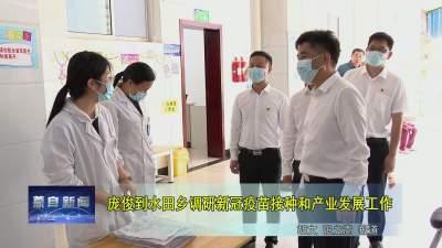 庞俊到水田乡调研新冠疫苗接种和产业发展工作