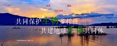 生物多样性 |【NO.134】红河约您一起迎COP15盛会每天一物开启红河生物多样性之门