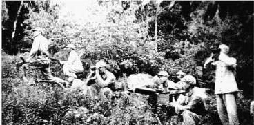 难忘的岁月:红河地区征粮剿匪