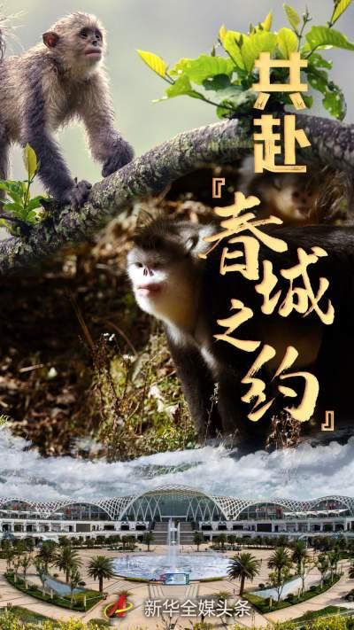 """这场事关地球未来的大会,今年将在中国""""春城""""召开……"""
